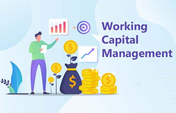 Working Capital Management cover